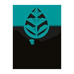 Logo M'Joy Café